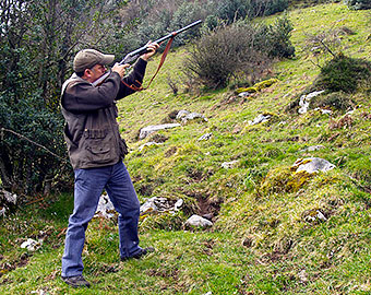 Big Game hunting (wild boar and chamois), in the Aramo  mountains.